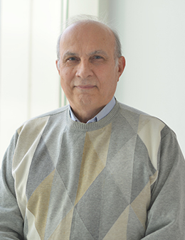 Ali Haghani