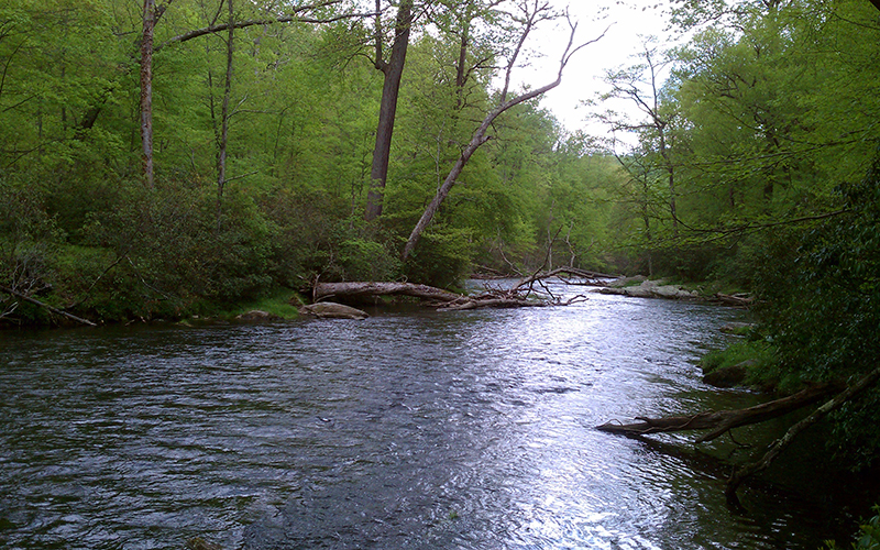 A river in Maryland